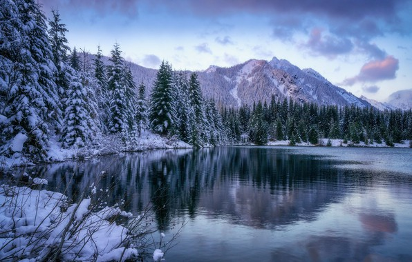 Picture winter, forest, snow, landscape, mountains, nature, lake, beauty, ate