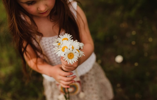 Picture flowers, chamomile, girl