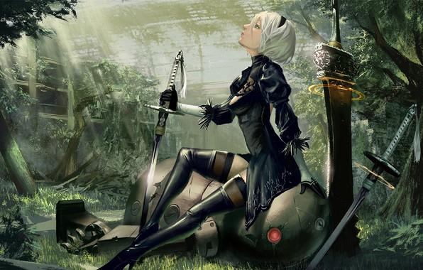 Picture girl, robot, sword, cyborg, Nier Automata, YoRHa No.2 Type B