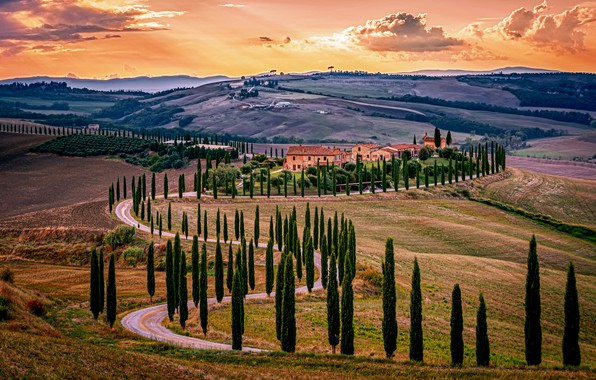Picture road, Italy, cypress, farmhouse, Baccoleno