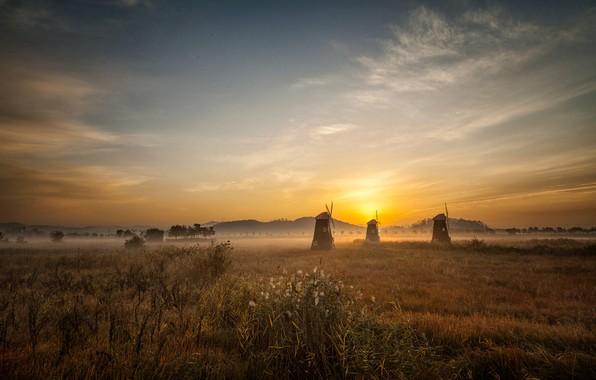 Picture field, the sky, grass, the sun, clouds, light, landscape, nature, fog, dawn, hills, morning, haze, …