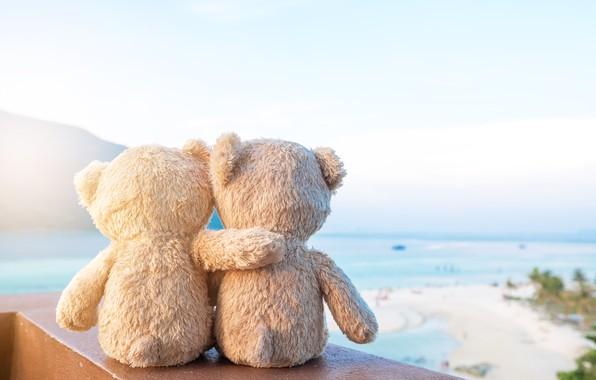 Picture sand, sea, beach, love, toy, bear, bear, pair, love, two, beach, bear, sea, romantic, sand, …