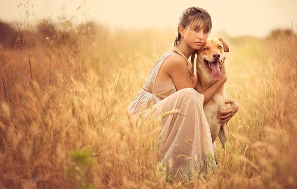Picture summer, girl, dog