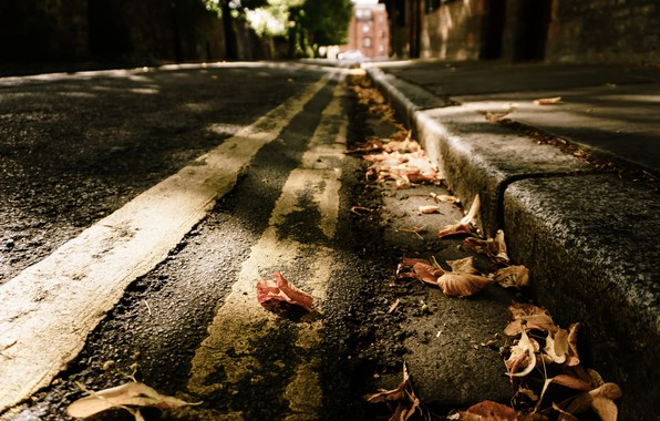 Picture leaves, the city, street