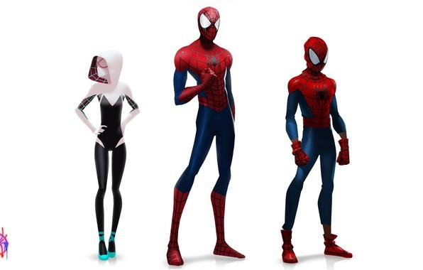 Picture spider-man, spider-man, concept, peter parker, gwen stacy, Gwen Stacy, Spider-Man: Into the Spider-Verse, through the …