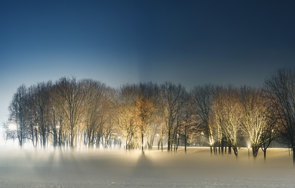 Picture winter, night, Park