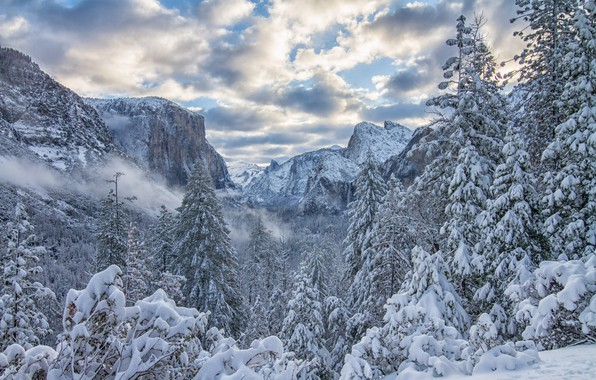 Picture winter, forest, snow, trees, mountains, ate, CA, California, Yosemite Valley, Yosemite National Park, Sierra Nevada, …