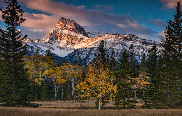 Picture autumn, forest, the sky, clouds, snow, trees, mountains, nature, blue, tops, ate, Canada, Albert, snow, …