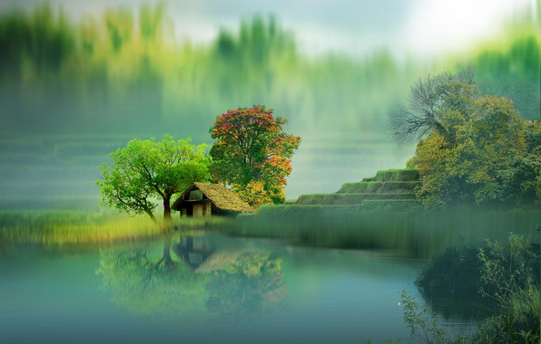 Picture trees, landscape, nature, lake, house, reflection, graphics, digital art