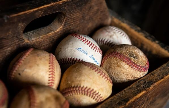 Picture macro, sport, balls