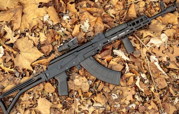 Picture weapons, tuning, machine, weapon, custom, custom, Kalashnikov, Russian, assault rifle, assault Rifle