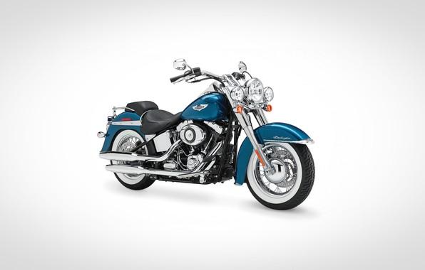 Picture Harley Davidson, bike, motorbike