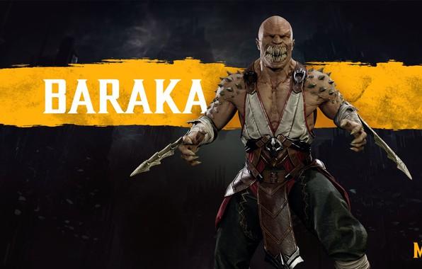 Picture The game, Fighter, Art, Mortal Kombat, Mortal Kombat, Character, Barack, Baraka, Tarkatan, Mortal Kombat 11, ...
