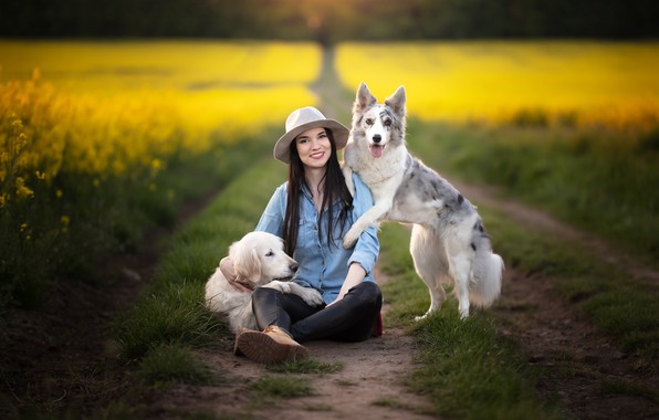 Picture road, dogs, girl, rape