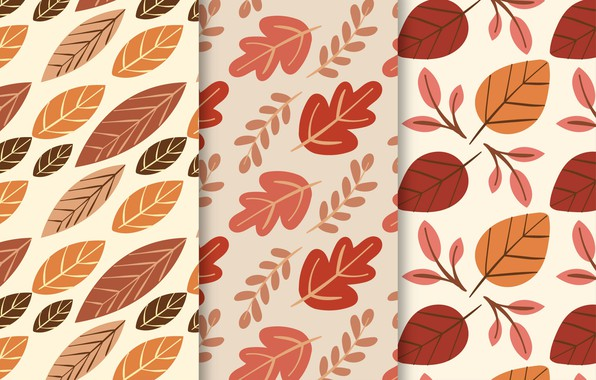 Picture background, texture, leaves, autumn, pattern, collection, Leaves