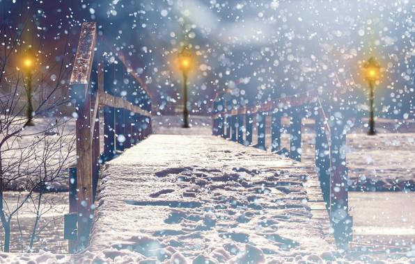 Picture photo, Winter, Bridge, Night, The city, Snow, Park, Street lights