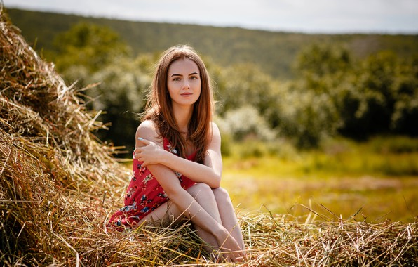 Picture smile, Girl, hay, Alexey Gilev