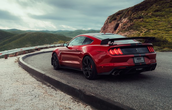 Picture Mustang, Ford, Shelby, GT500, wing, bloody, 2019