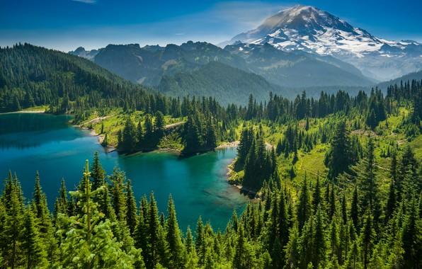Picture forest, trees, mountains, lake, Mount Rainier, The cascade mountains, Eunice Lake, Washington State, Cascade Range, …