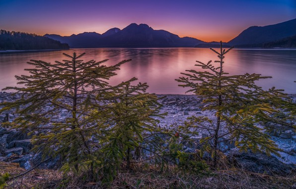 Picture sunset, mountains, lake, Germany, ate, Bayern, tree, Germany, Bavaria, Bavarian Alps, The Bavarian Alps, Lake …