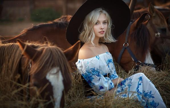 Picture look, girl, pose, photo, model, horse, dress, hay, beautiful, Alisa Tarasenko