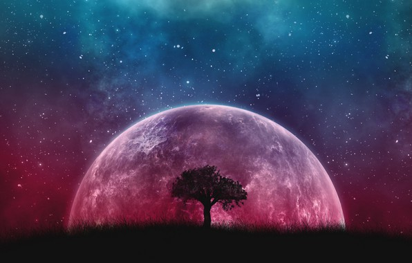 Picture Fantasy, Tree, Planet, Stars sky