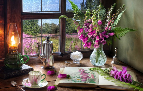 Picture flowers, style, lamp, bouquet, window, mug, Cup, sugar, book, fern, coffee pot, Digitalis, Digitalis
