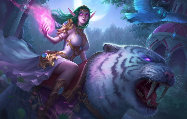 Picture Figure, Owl, Tiger, Elf, Art, Pet, Night Elf, World of WarCraft, WarCraft, Illustration, Characters, Owl, …
