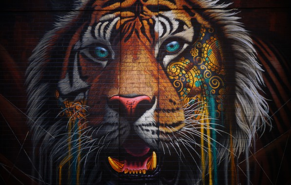 Picture Tiger, Graffiti, Wallpaper