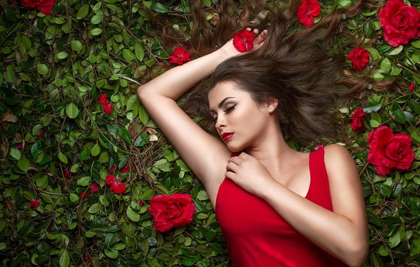 Picture chest, leaves, girl, flowers, pose, sleep, roses, hands, makeup, sleeping, red, lies, brown hair, beautiful, …