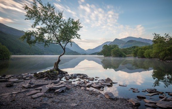 Picture mountains, lake, tree, Wales