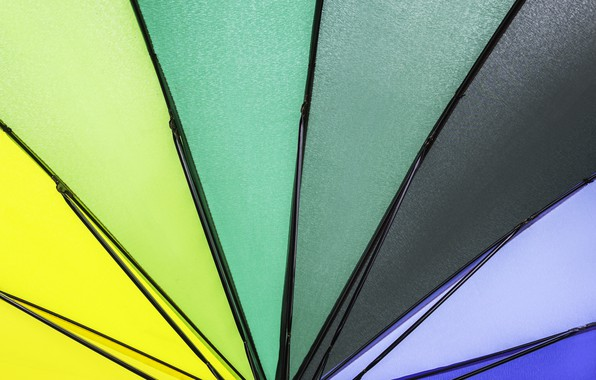 Picture background, color, rainbow, colors, umbrella, colorful, rainbow, umbrella, background