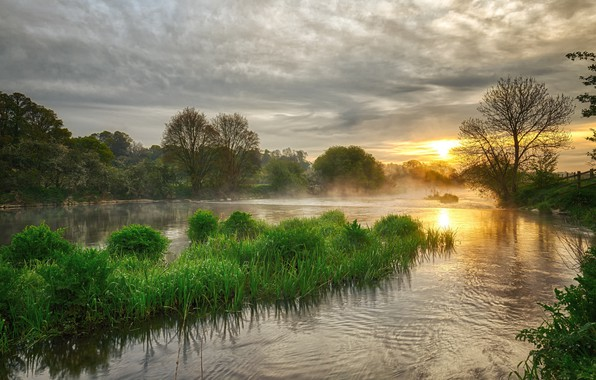 Picture grass, water, landscape, sunset, nature