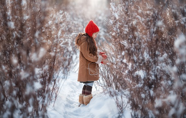 Picture winter, snow, nature, girl, the bushes, Anastasia Barmina, Anastasia Barmina