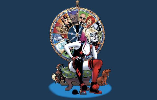 Picture fantasy, dog, artwork, superhero, fantasy art, DC Comics, sitting, Harley Quinn, fantasy girl, Harleen Frances …