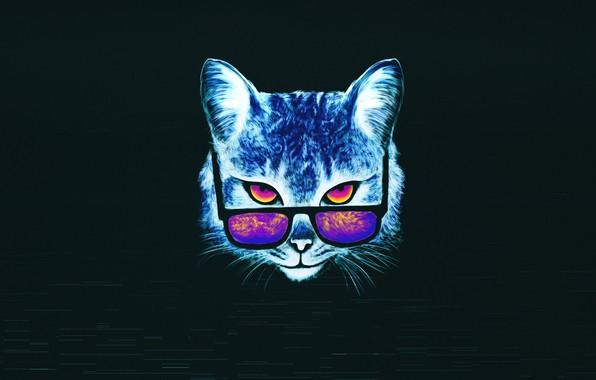Picture Minimalism, Cat, Glasses, Cat, Style, Face, Art