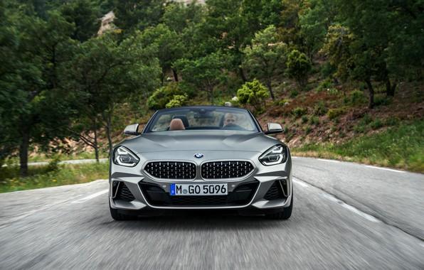 Picture road, grey, vegetation, BMW, Roadster, front view, BMW Z4, M40i, Z4, 2019, G29