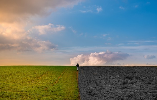Picture field, the sky, earth, people