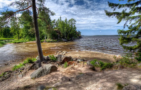 Picture greens, forest, the sky, the sun, clouds, trees, Park, stones, shore, Bay, Russia, reserve, Vyborg, ...
