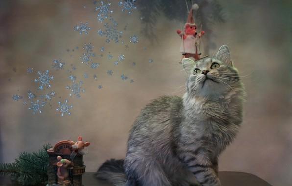 Picture cat, cat, snowflakes, animal, new year, spruce, branch, mouse, table, figures, Kovaleva Svetlana, Svetlana Kovaleva