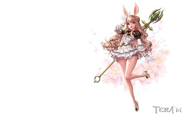 Picture magic, the game, anime, fantasy, staff, children's, fake, jungmin jin /dospi, TERA M