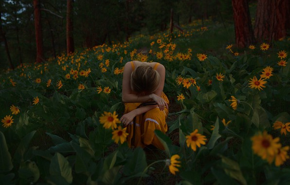 Picture forest, girl, flowers, pose, mood, melancholy, Balsamorhiza