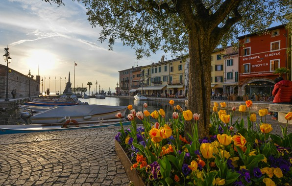 Picture flowers, lake, tree, building, home, Bay, boats, port, Italy, flowerbed, promenade, Italy, Lake Garda, Lazise, …
