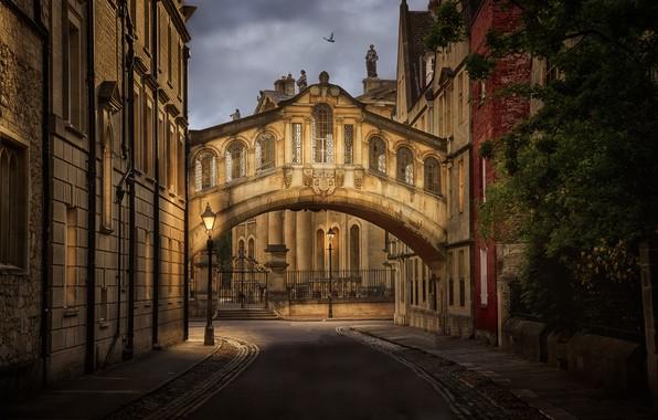 Picture England, building, lights, UK, lane, architecture, Oxford, the bridge of sighs, Bridge of Sighs, Hertford …