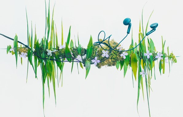 Picture grass, headphones, grass, headphones, Dina Belenko