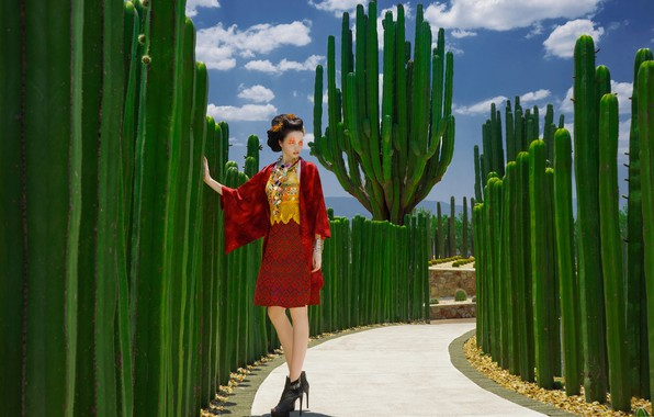 Picture model, Japan, cacti, fashion