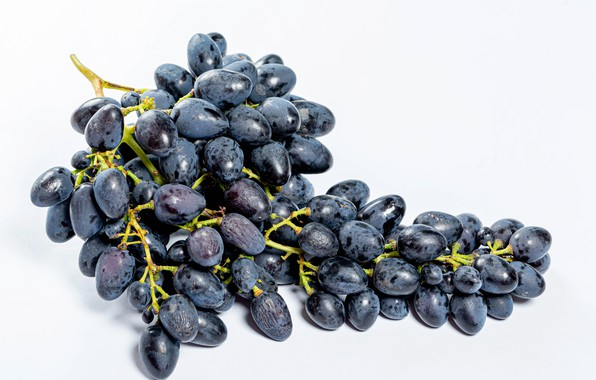 Picture grapes, bunch, light background