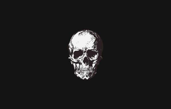 Picture simple, skull, minimalism, sake, black background, minimalism, Black background