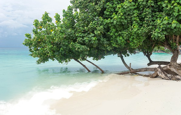Picture sand, sea, wave, beach, summer, summer, beach, sea, blue, seascape, sand, wave, tropical