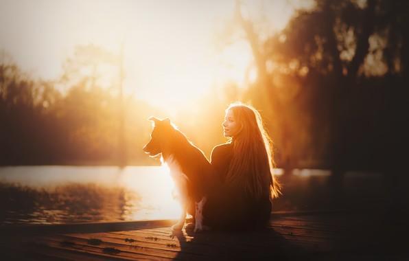 Picture girl, light, dog
